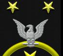 Fleet Master Chief Petty Officer