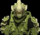 Hayabusa Powered Assault Armor