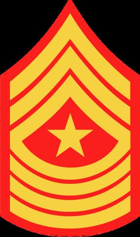 Datei:355px-USMC-E9-SGM.png
