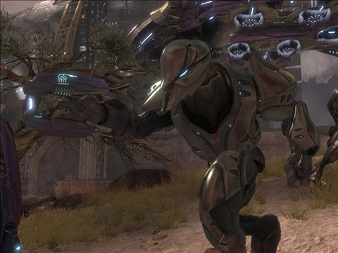 File:Sangheili Special Operations.png