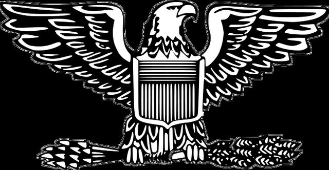 File:O-6 insignia.png