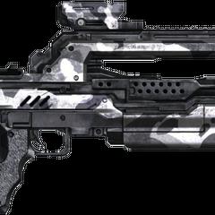 Das Kampfgewehr mit Arctic (ACT) Skin