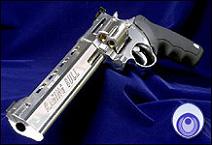 Gun ragingbull