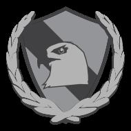 Platinum Team insignia
