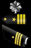 File:Commander boards.png