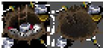 Skeletonspawner2