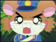 Sparkle as a Police Ham-Ham