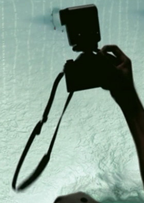 File:Human holding a camera in Happy Feet.PNG