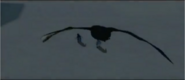 Boss Skua's flying shadow in Happy Feet (video game) level 11 cutscene