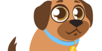 Tawny Labrador