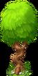 Bent Tree (seaside)