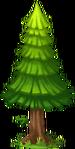 Decoration Fir Tree