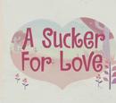 A Sucker for Love/Galería
