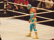 220px-Sin Cara in the ring