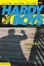 HardyBoysUB3