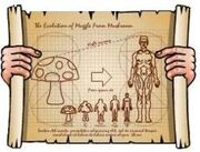 The Evolution of Muggles From Mushrooms