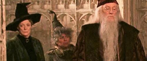 File:Harry-potter2-professorsprout.jpg