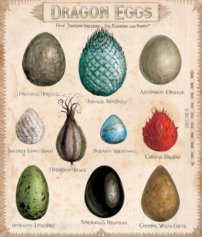 File:Dragon eggs.jpg
