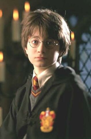 File:Harry year one.jpg