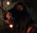 Rubeus Hagrid'in Asası