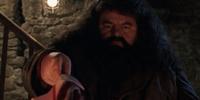 Rubeus Hagrids Zauberstab