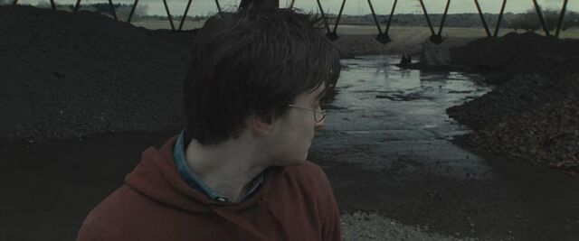 File:Harry-Horcrux Hunt.JPG