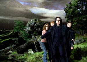 Snape protect mf