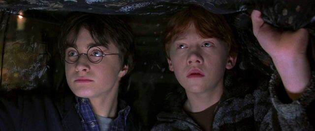 File:Harry Potter and the Chamber of Secrets 1245.jpg