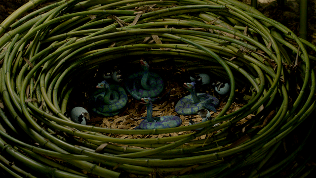 File:Occamy nest FB.png