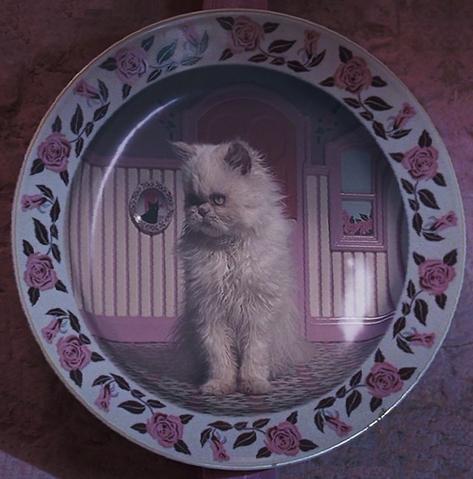 File:KittenPlate.png