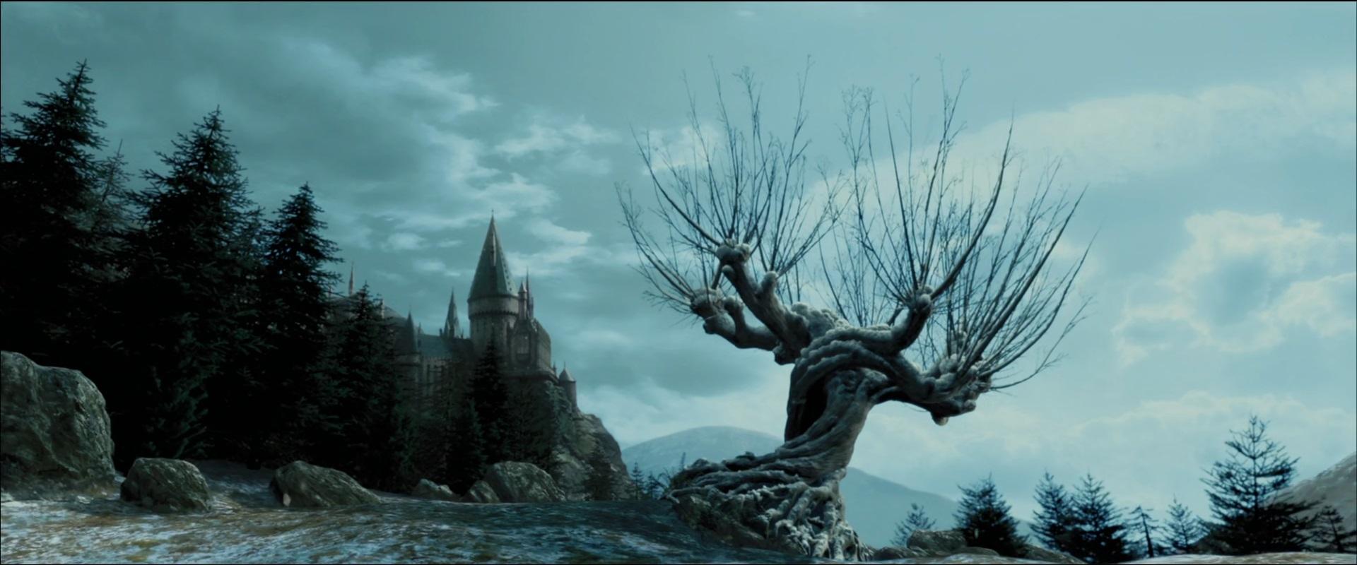 Willowhogwarts.jpg