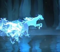 Greyhound-patronus