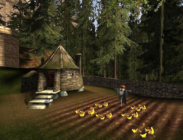 File:Hagrid's hut 03.jpg