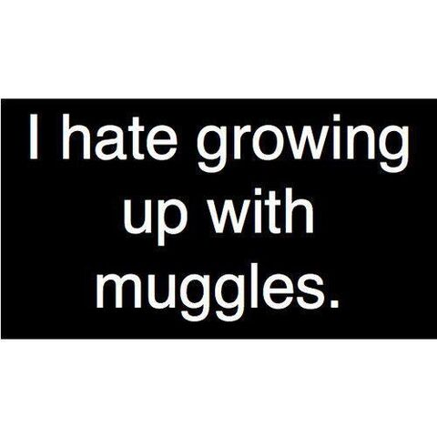Datei:I Hate Growing Up With Muggles.jpg