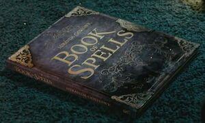BookofSpellsMirandaGoshawk