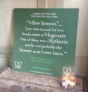 Albus Severus Quote Card 01
