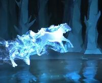 BlackStallion-patronus