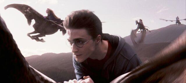 File:Order-of-the-phoenix-movie-screencaps.com-12596.jpg
