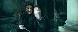 Harry-potter-deathly-hallows1 harry bellatrix