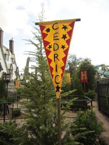 File:Cedric banner1.jpg
