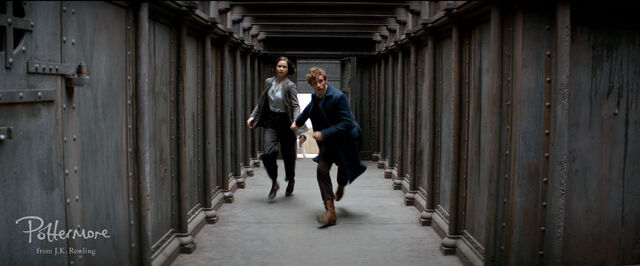 File:Tina and Newt on the run.jpg