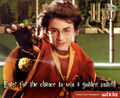 Goldensnitch contestpageimage.jpg