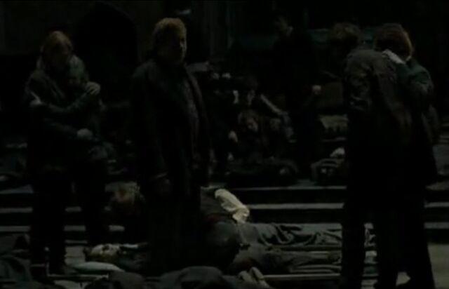 File:The Weasleys mourn.jpg
