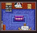 Secret Muggle Room