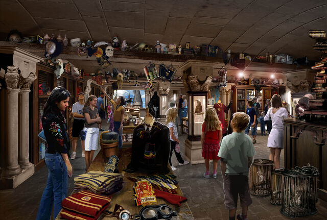 File:Filch's Emporium of Confiscated Goods.jpg
