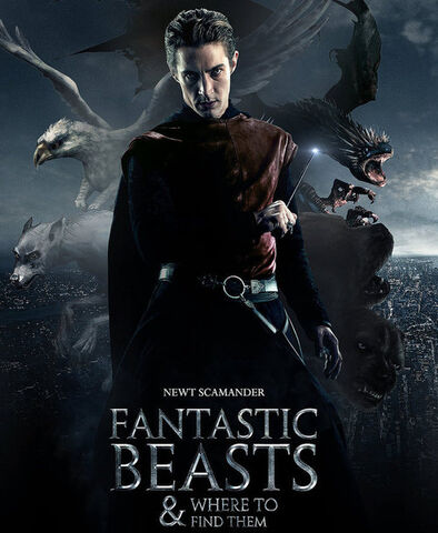 File:Fantastic Beasts and Where to Find Them Poster.jpg
