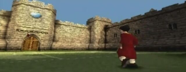 File:Quidditch Training Pitch.jpg