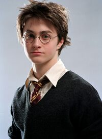 HarryPOA.jpg