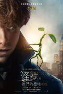 Fantastic Beasts INT Poster 03