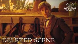 Fantastic Beasts and Where to Find Them - DELETED SCENE debut at A Celebration of Harry Potter 2017